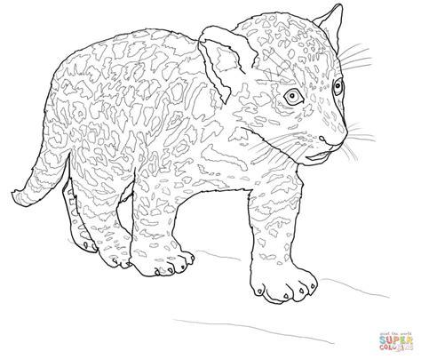 imagenes de jaguares para dibujar ausmalbild baby jaguar ausmalbilder kostenlos zum