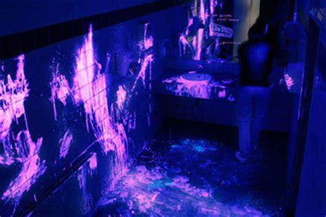 black light bathroom quot motella quot news views and politics of new zealand s