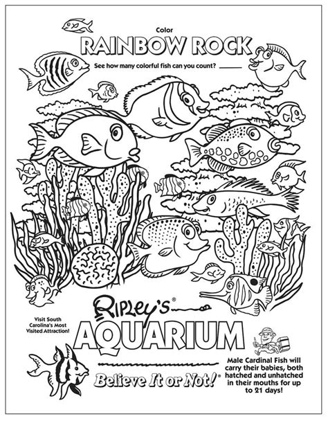 the aquarium colouring books aquarium coloring page kids coloring book