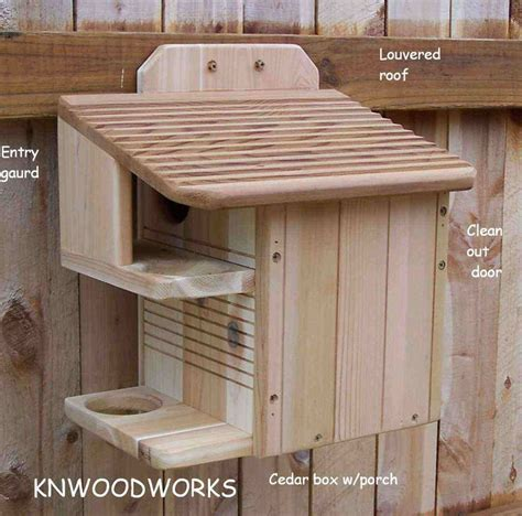 i want to build a house 25 best ideas about squirrel feeder on pinterest what