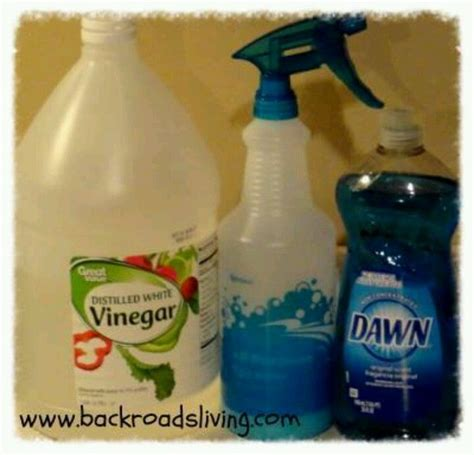 dawn and vinegar cleaning solution yummy food