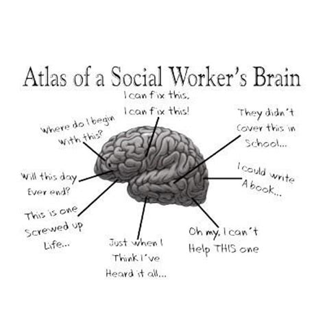 psychology images the brain poem wallpaper and 17 best images about social work on told you