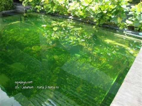 Pupuk Cair Aquascape Ferti One aquajaya aquascape design project 33 600 liter