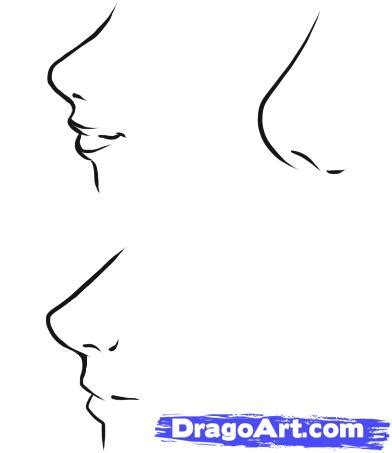 anime nose how to draw anime noses step by step anime people anime