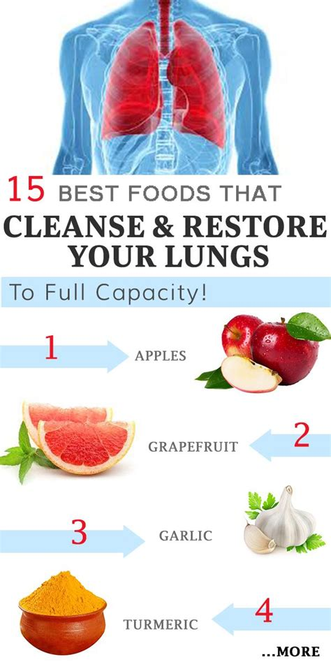 Foods That Detox Your Lungs best 25 lung cleanse ideas on lung detox