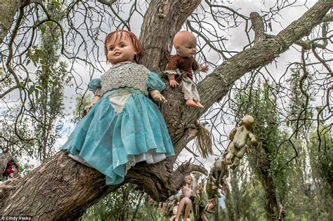 haunted doll tree mexico s island of the dolls where toys hang from tress