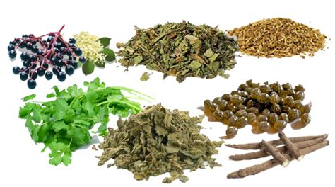 Detoxing From Cocaine Using Herbs by Meet 5 Cleansing Detoxifying Herbs