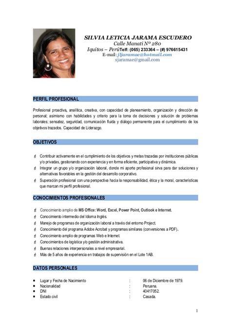 Modelo De Curriculum Vitae Perfil Profesional Slje Cv 2015