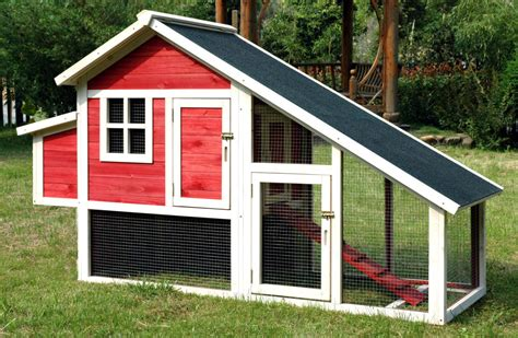 buy chicken house the cost of building a coop and raising chickens
