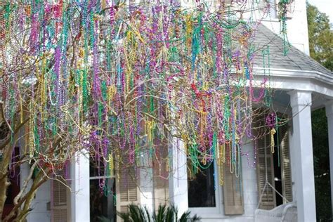 mardi gras bead tree mardi gras bead tree photos that make me oh so delighted