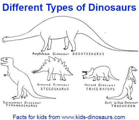 Kaos 3d Dinosaurus Goo Orange 300 dinosaur names by goo