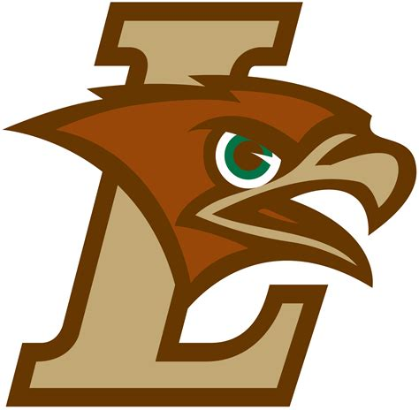 hawks colors lehigh mountain hawks