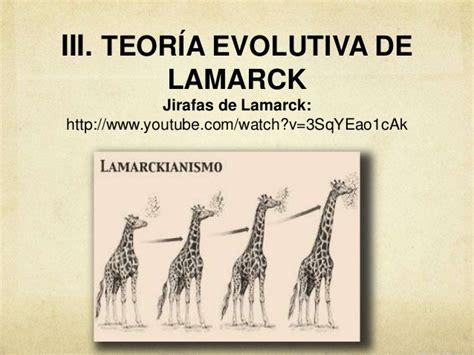 imagenes de las jirafas de lamarck darwin vs lamarck