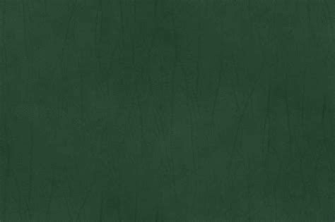 Green Leather by Leather Texture Co Series Green
