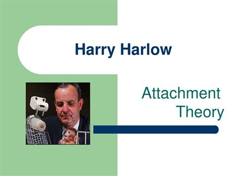 harry harlow contact comfort ppt harry harlow powerpoint presentation id 284280