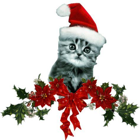 imagenes animadas navideñas con movimiento animados gif con gatitos navide 241 os