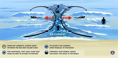rip diagram how rip currents work marine knowledge your trusted