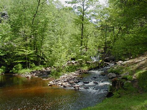 greenwood park trail nny trails