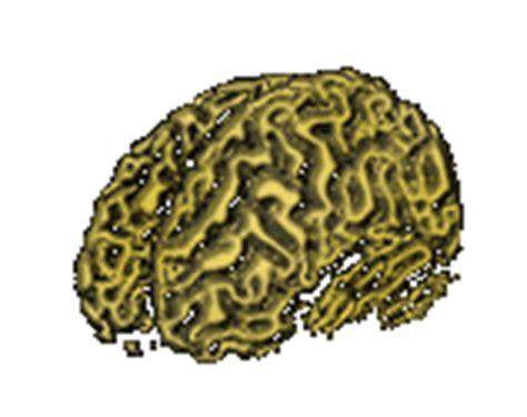imagenes gif de funciones matematicas neurologopeda s blog just another wordpress com weblog