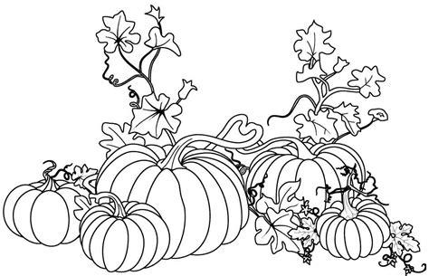 coloring page of pumpkins and leaves imagenes calabazas para colorear buscar con google