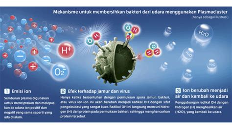 Vacuum Cleaner Mite Catcher Ec Hx100 jual sharp vacuum cleaner mite catcher ec hx100y s murah
