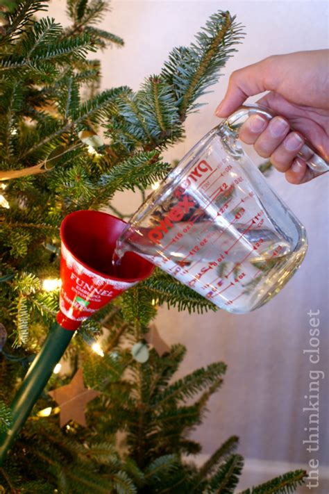 christmas tree water mixture a rustic glam house tour the thinking closet