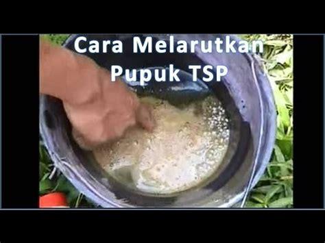 Pupuk Npk Mutiara Untuk Durian cara penggunaan supernasa pupuk organik padat doovi