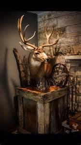 mule deer pedestal mounts muley that habitat base is amazing bbd