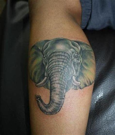 detailed elephant tattoo simple big colored and detailed elephant head tattoo on