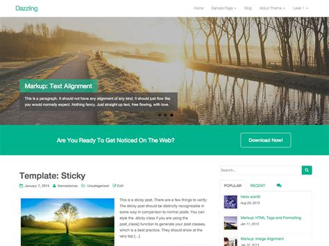 wordpress theme options 171 tags 171 free wordpress themes