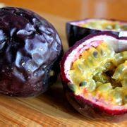 fiore della passione significato fiore della passione passiflora passiflora