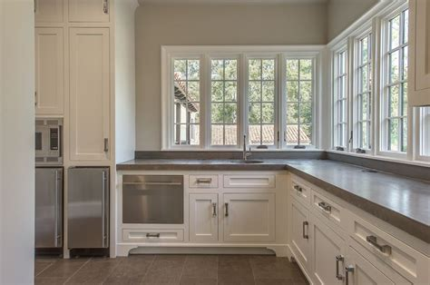 stainless steel swing out pantry kitchen designs with dishwasher next to fridge home and