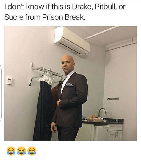 Prison Break Memes - i don t know if this is drake pitbull or sucre from prison