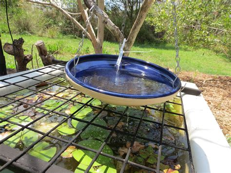 bird bath top bird cages