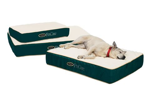 bed for arthritis arthritic beds orthopedic beds for dogs with arthritis