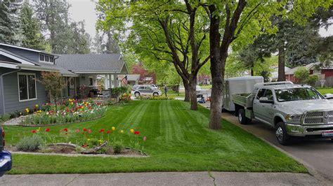 home hayden lawn maintenance and sprinkler repairs