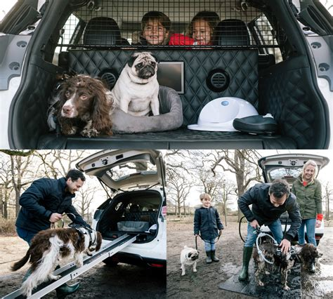 nissan car for dogs nissan x trail 4dogs is the quot pawfect quot car for your canine companions torque