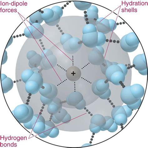 a hydration shell liquid molecule diagram liquid diagram elsavadorla