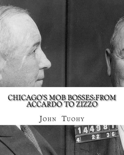 family secrets the that crippled the chicago mob books chicago s mob bosses from accardo to zizzo