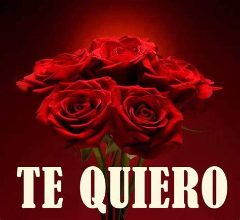 imagenes de rosas del dia del amor y la amistad im 193 genes de flores 174 fotos de rosas margaritas o lirios