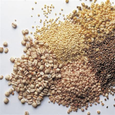 whole grains rich in fibre the best insoluble fiber healthy living