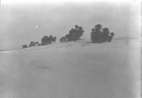 dune dune 1 spanish florida memory coastal dunes with spanish bayonets