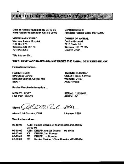 rabies vaccine certificate template vaccination certificate template 28 images free rabies