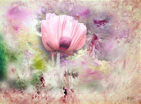 poppy davina romantic poppy painting by davina nicholas