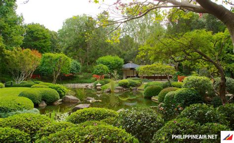 Toowong Botanical Gardens V 233 M 225 Y Bay đi Brisbane Gi 225 Rẻ Philippine Airlines