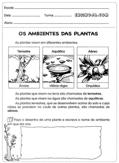 Pin em os ambientes das plantas
