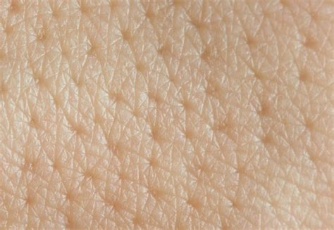 Human Skin Shedding Facts by New Insights Into Skin Cells Could Explain Why Our Skin
