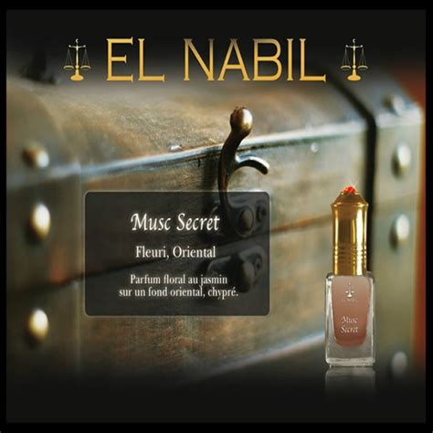 Parfum Silver Secret parfum el nabil sans alcool musc secret 5ml
