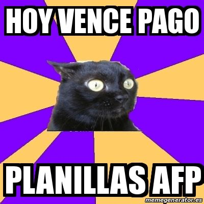Anxiety Cat Meme Generator - meme anxiety cat hoy vence pago planillas afp 14533171