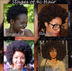 4c hair and growth different stages of hair growth being nappy natural